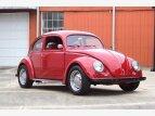1951 Volkswagen Beetle for sale 101351652