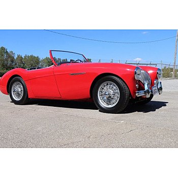 1954 Austin-Healey 100 for sale 101030552