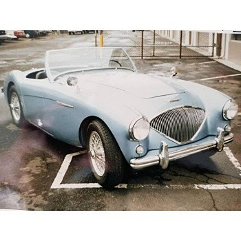 1954 Austin-Healey 100 for sale 101036145