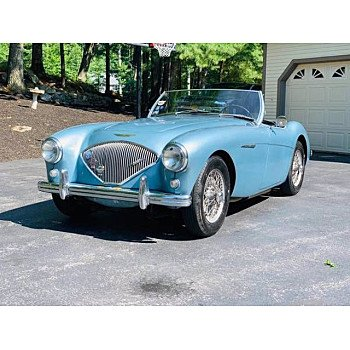1954 Austin-Healey 100 for sale 101361108