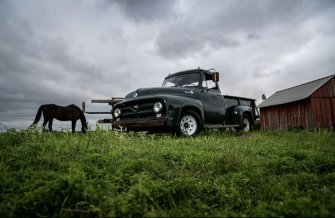 1955 Ford F250 2WD Regular Cab for sale 101533450