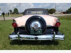 1955 Ford Fairlane for sale 101371740