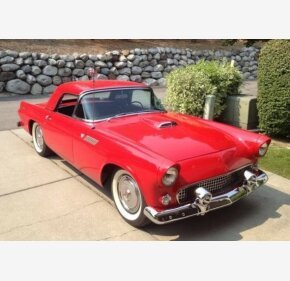 1955 Ford Thunderbird for sale 101006479
