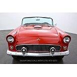 1955 Ford Thunderbird for sale 101507141