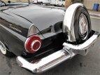 1955 Ford Thunderbird for sale 101532348