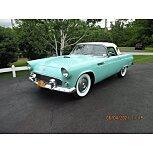 1955 Ford Thunderbird for sale 101590848