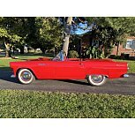 1955 Ford Thunderbird for sale 101617409