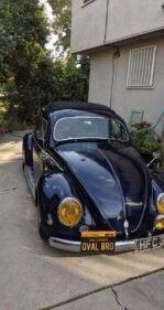 1956 Volkswagen Beetle for sale 101301944