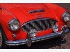 1957 Austin-Healey 100-6 for sale 101548059