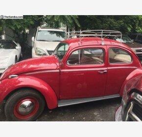 1961 Volkswagen Beetle for sale 100890464
