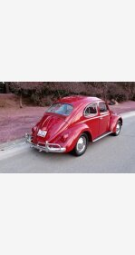 1962 Volkswagen Beetle for sale 101094831