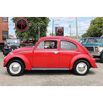 1962 Volkswagen Beetle for sale 101380049