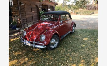1962 Volkswagen Beetle for sale 101385708