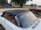 1964 Chevrolet Corvair for sale 101548929