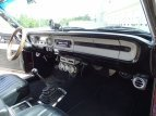 1964 Ford Falcon for sale 101516235