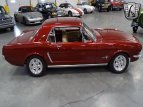 1964 Ford Mustang for sale 101476927