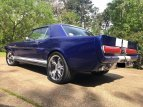1964 Ford Mustang for sale 101494655
