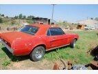 1964 Ford Thunderbird for sale 100991816