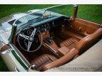 1964 Jaguar E-Type for sale 101536736