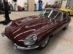 1964 Jaguar E-Type for sale 101590553
