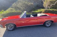 1964 Pontiac Le Mans for sale 101431018