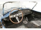1964 Shelby Cobra for sale 101099440