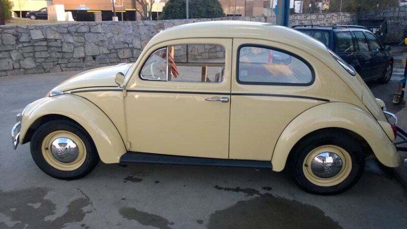 Volkswagen Beetle Classics For Sale Classics On Autotrader
