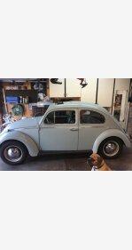 1964 Volkswagen Beetle for sale 101113550