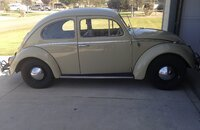 1964 Volkswagen Beetle for sale 101341764