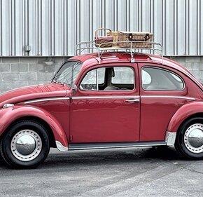 1964 Volkswagen Beetle for sale 101438284