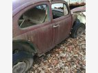 1964 Volkswagen Beetle for sale 101534969
