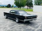 1965 Ford Galaxie for sale 101553848