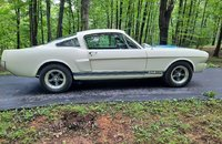 1965 Ford Mustang Shelby GT350 for sale 101339447