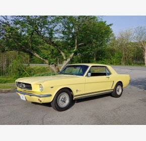 65 Mustang For Sale >> 1965 Ford Mustang Classics For Sale Classics On Autotrader