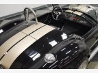 1965 Shelby Cobra for sale 101505947