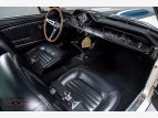 1965 Shelby GT350 for sale 101560123