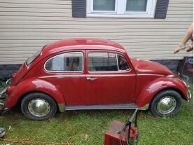 1965 Volkswagen Beetle for sale 101203384