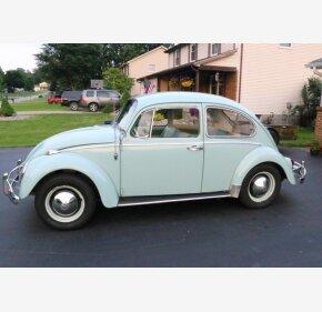 1965 Volkswagen Beetle for sale 101092920