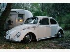 1965 Volkswagen Beetle Coupe for sale 101486687