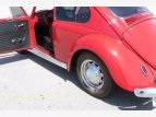 1965 Volkswagen Beetle for sale 101573426