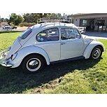 1965 Volkswagen Beetle for sale 101584703