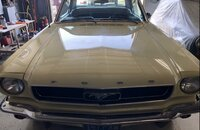 1966 Ford Mustang Coupe for sale 101258351