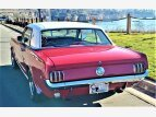 1966 Ford Mustang for sale 101523530