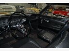 1966 Ford Mustang Fastback for sale 101490229