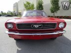 1966 Ford Mustang for sale 101569131