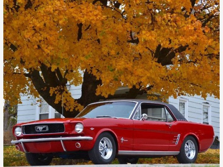 1966 Ford Mustang for sale 101584497