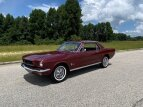 1966 Ford Mustang for sale 101593336