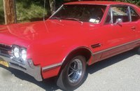 1966 Oldsmobile 442 for sale 101060856