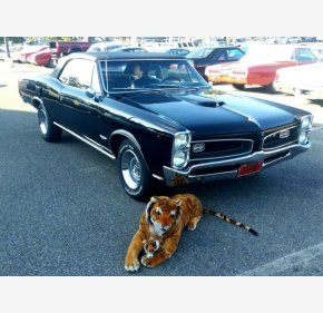 1966 Pontiac GTO for sale 101185505