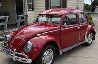 1966 Volkswagen Beetle for sale 101237139
